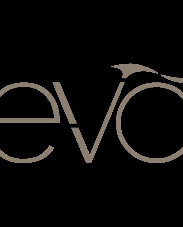 EVO baaslakid